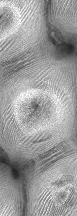 Laser textured steel surface (UTWENTE)